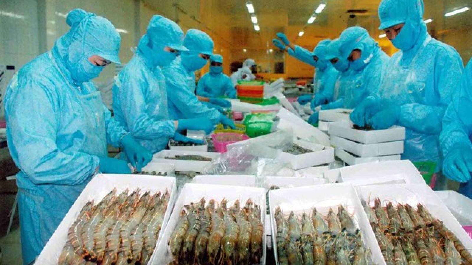Australia increases imports of Vietnamese shrimp