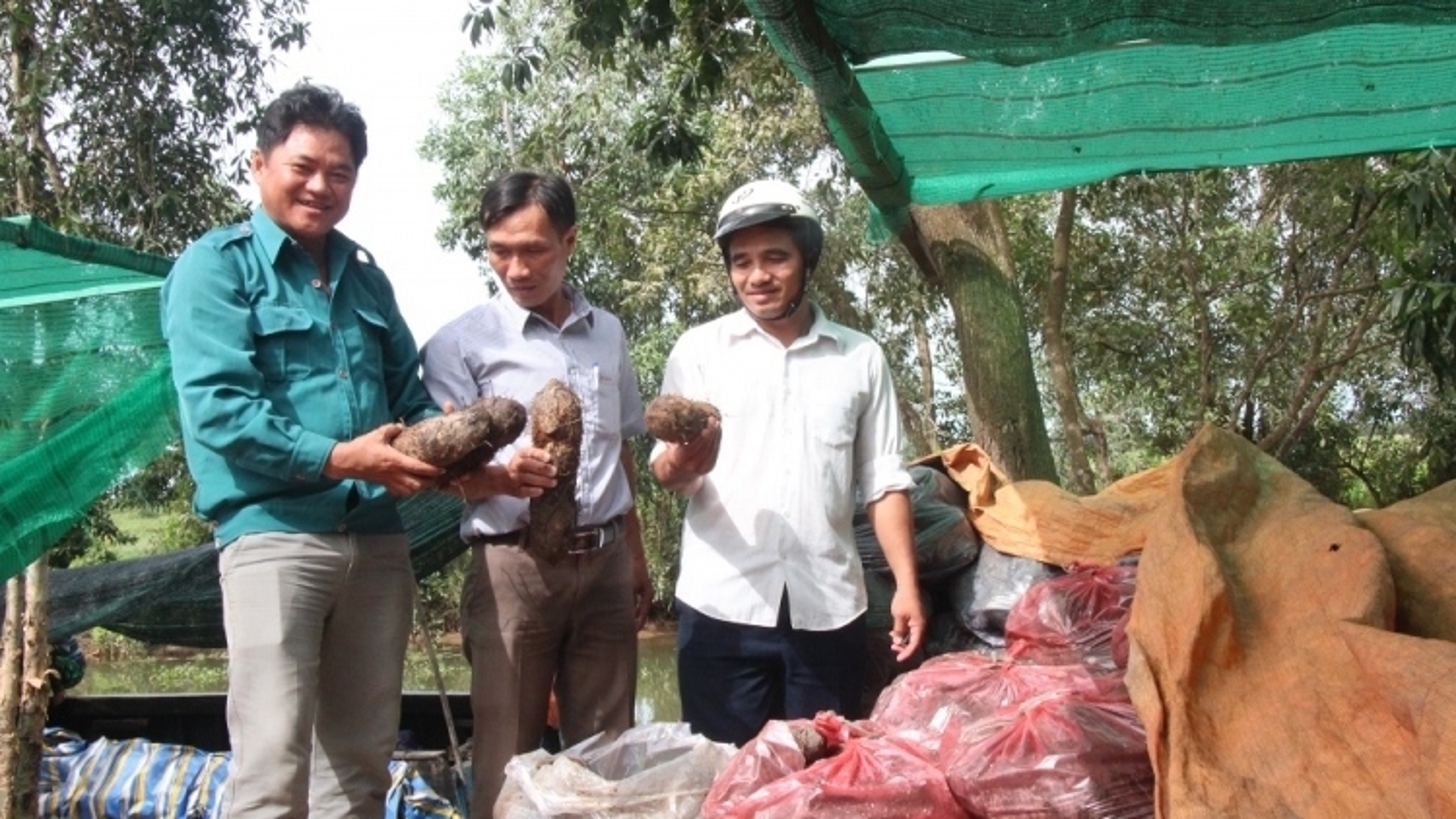 Long An nỗ lực đưa nông sản lên sàn thương mại điện tử