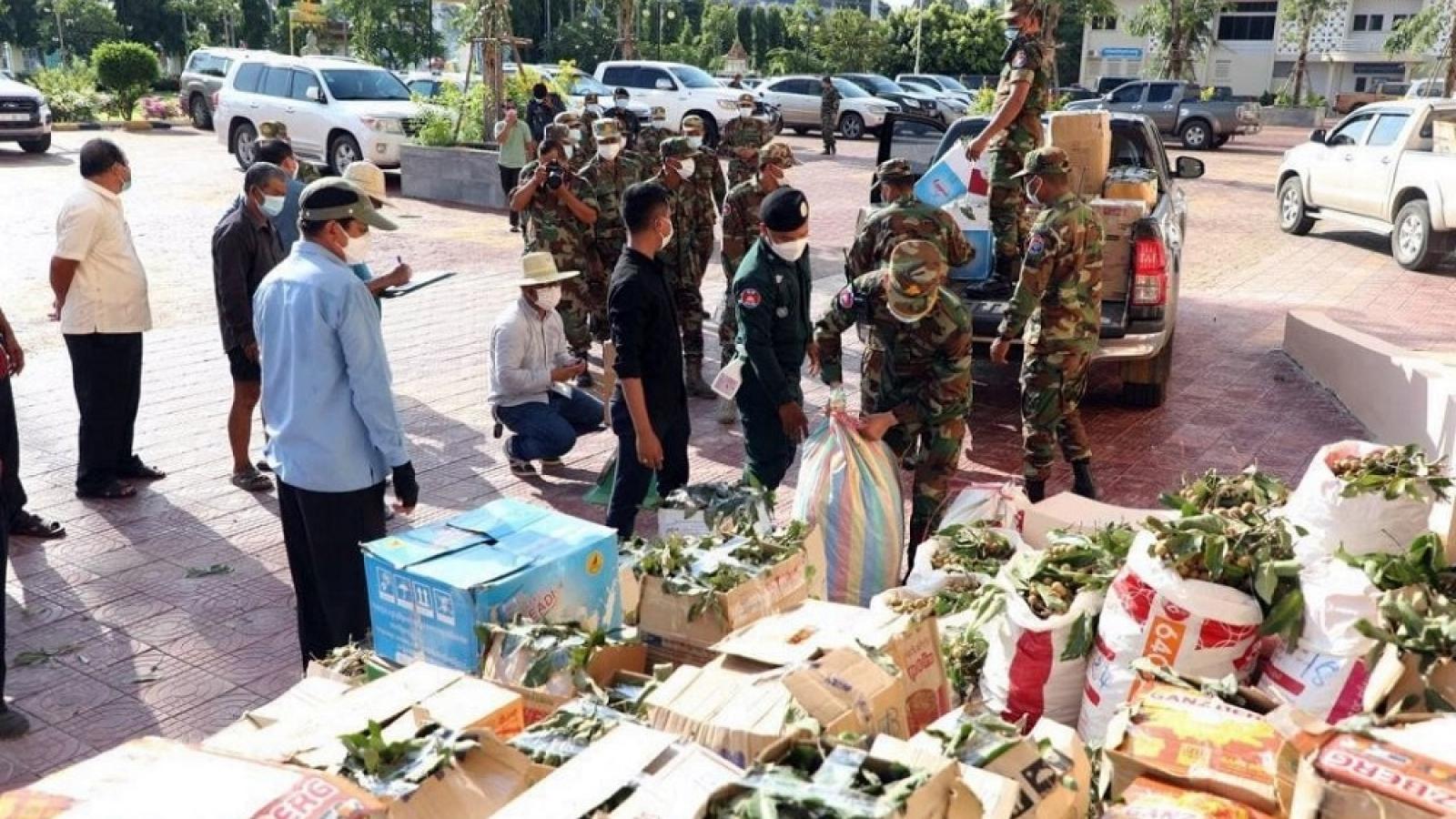 Nhãn Campuchia dồn ứ trên thị trường do không thể xuất khẩu sang Trung Quốc