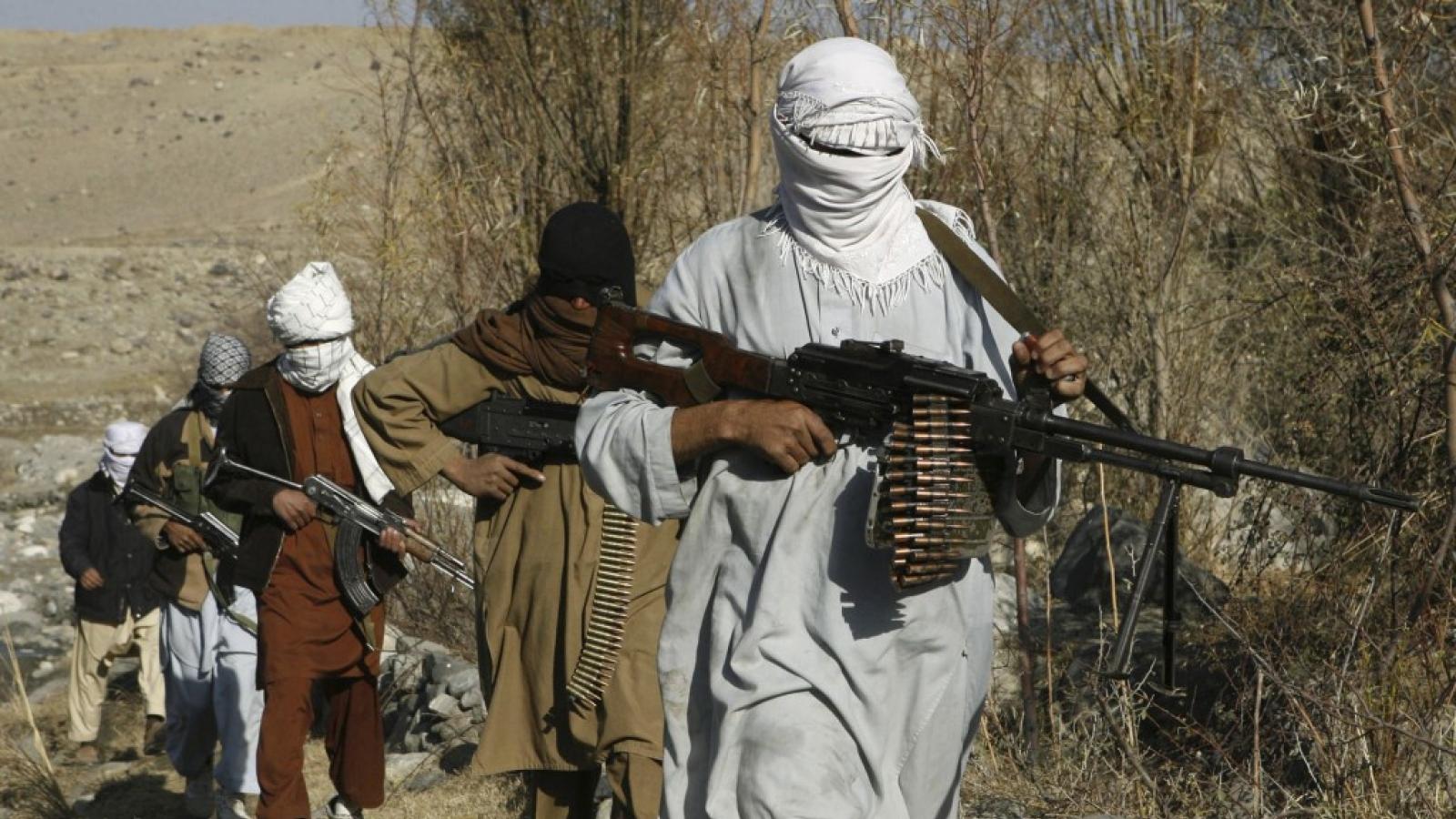 """Mỹ: Taliban phải chịu trách nhiệm về các """"hành động bạo lực thái quá"""" ở Afghanistan"""