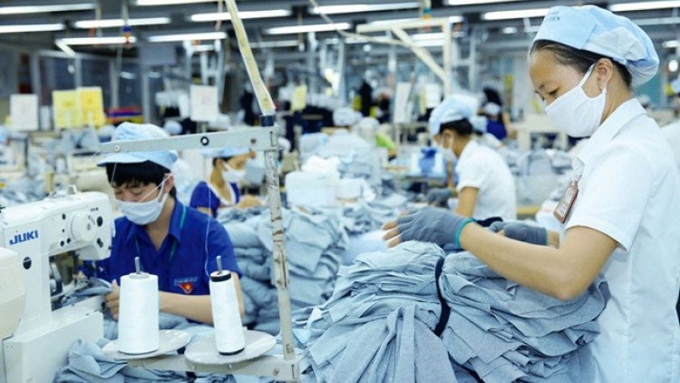 Vietnamese GDP growth to slow down during remainder of year