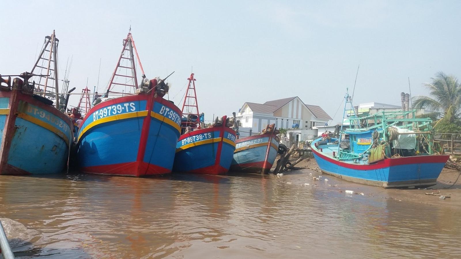 Bến Tre giải cứu hàng trăm tấn hải sản tồn đọng ở cảng cá Bình Đại