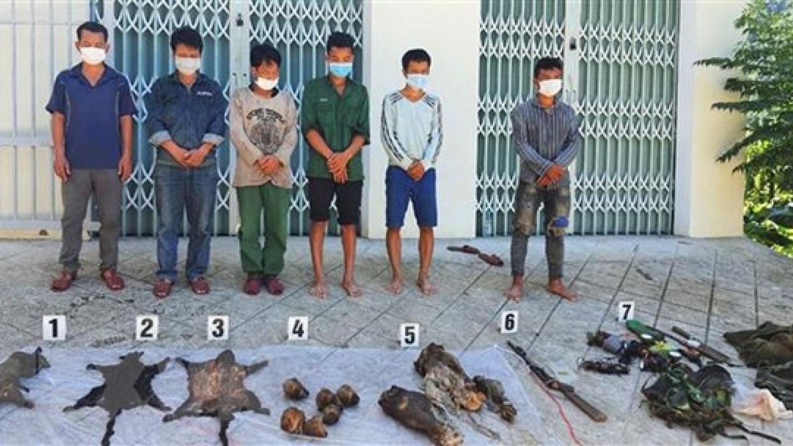 Bắt 6 đối tượng săn bắn nhiều động vật hoang dã ở Vườn quốc gia Bạch Mã