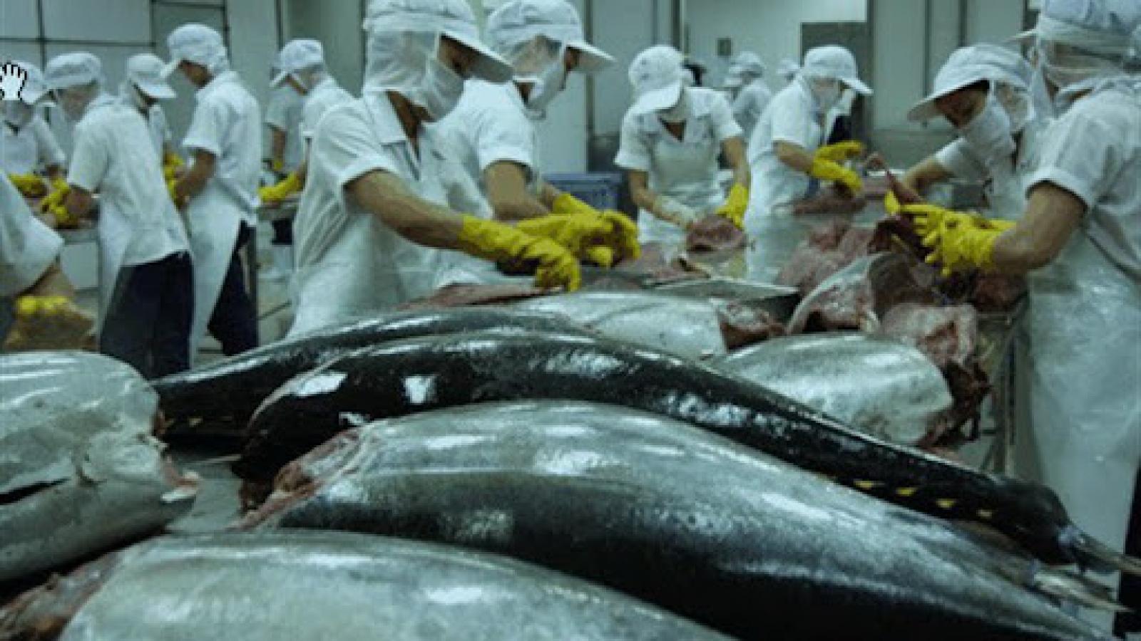 Tuna exports to major markets drop due to COVID-19