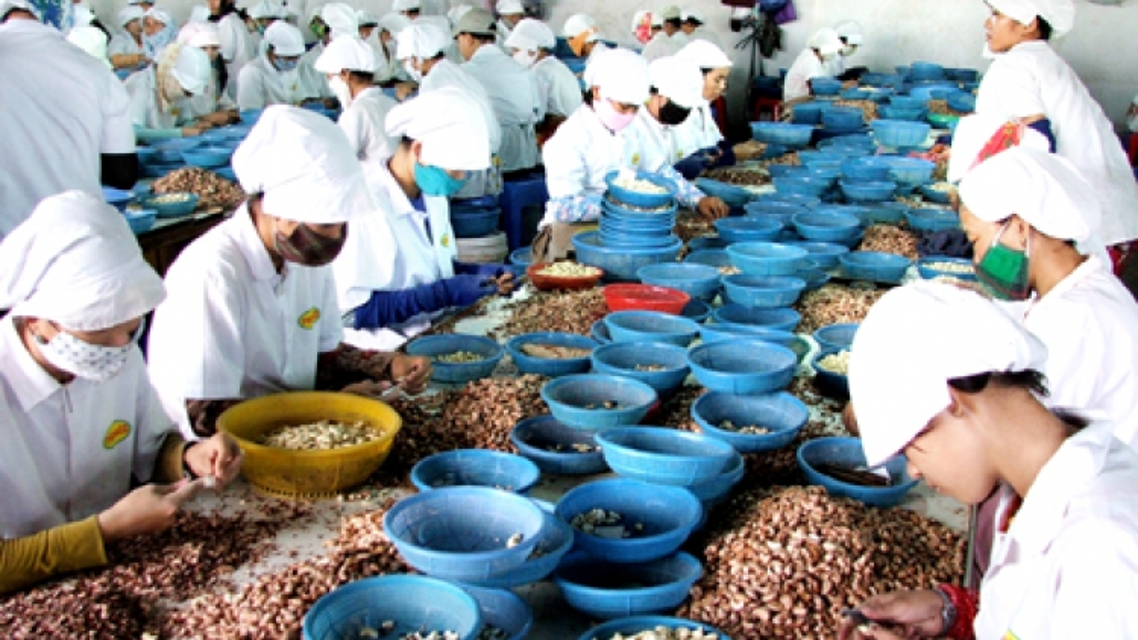 Africa represents potential market for Vietnamese goods