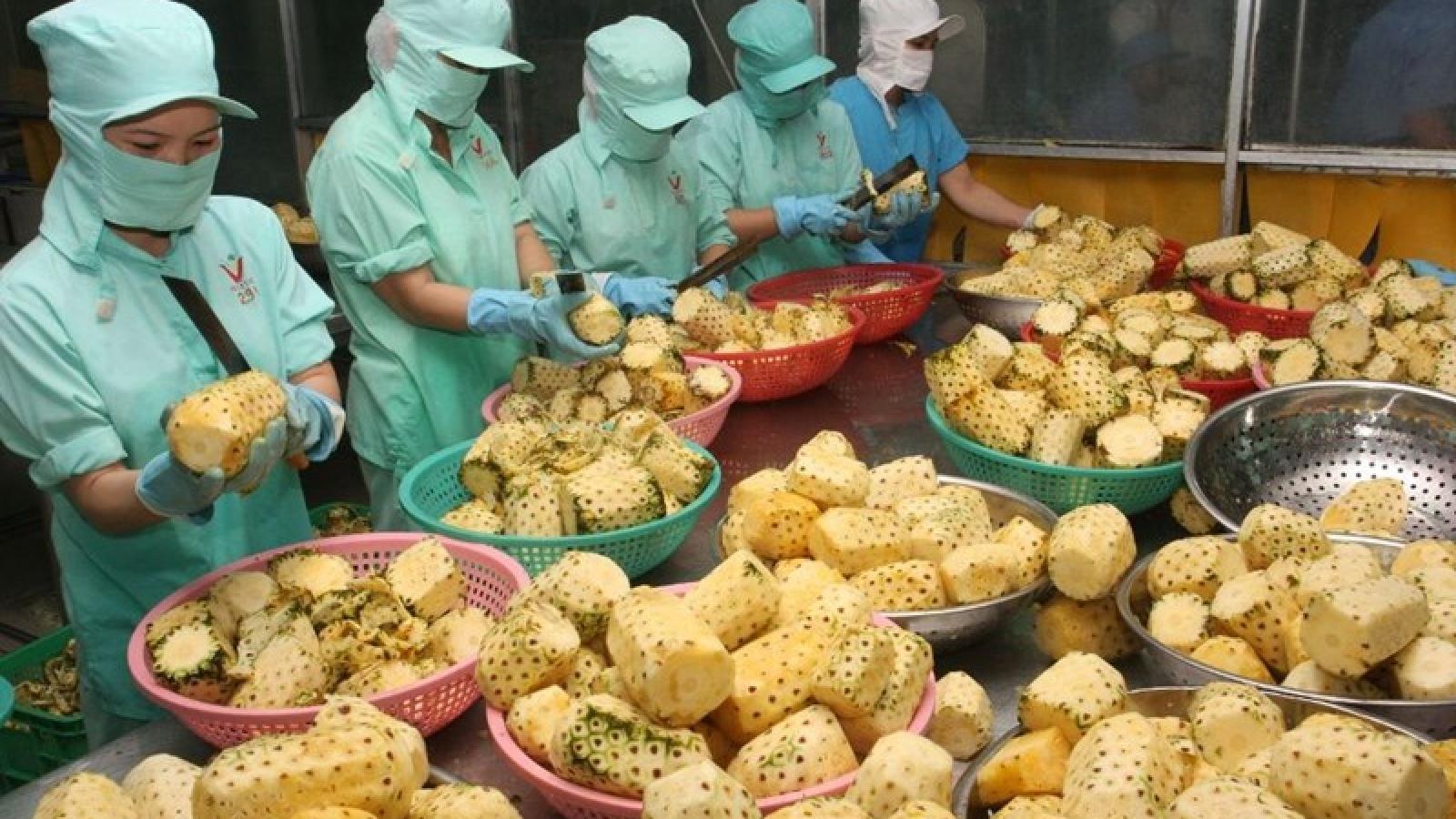 Xuất khẩu nông sản Việt sang thị trường Ma Rốc cần cạnh tranh về giá