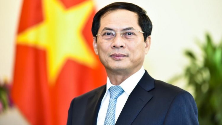 FM Bui Thanh Son to visit Russia this weekend