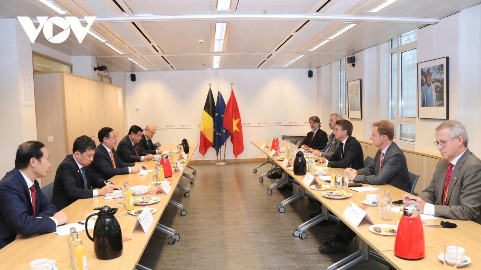 Vietnam wants to enhance cooperative ties with Belgium: top legislator