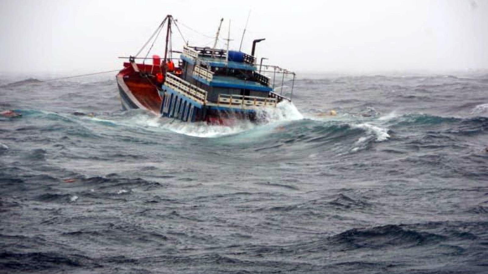Tàu Cảnh sát biển đưa ngư dân, thuyền viên gặp nạn trong bão số 5 vào bờ an toàn