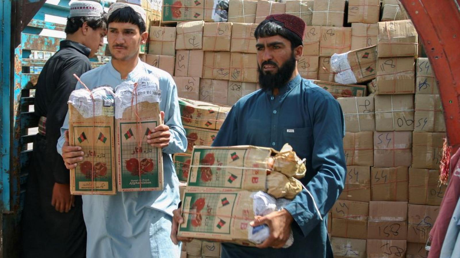 Phương Tây chần chừ viện trợ cho Afghanistan, cơ hội rơi vào tay Trung Quốc và Pakistan