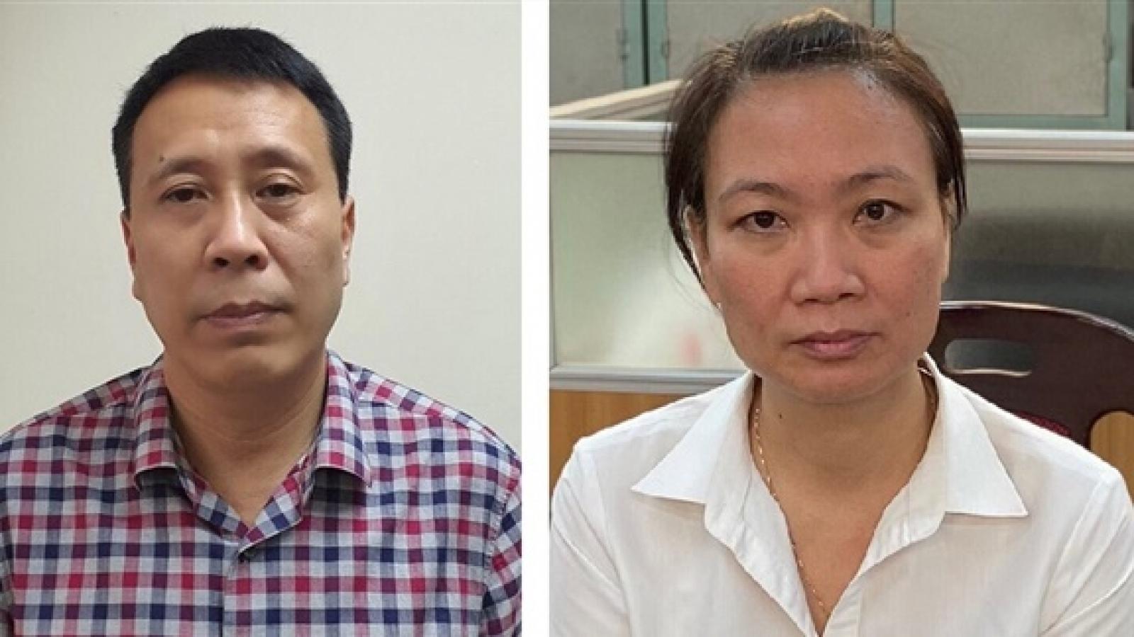 Bắt giam giám đốc liên quan vụ nâng khống giá trị cây xanh ở Hà Nội