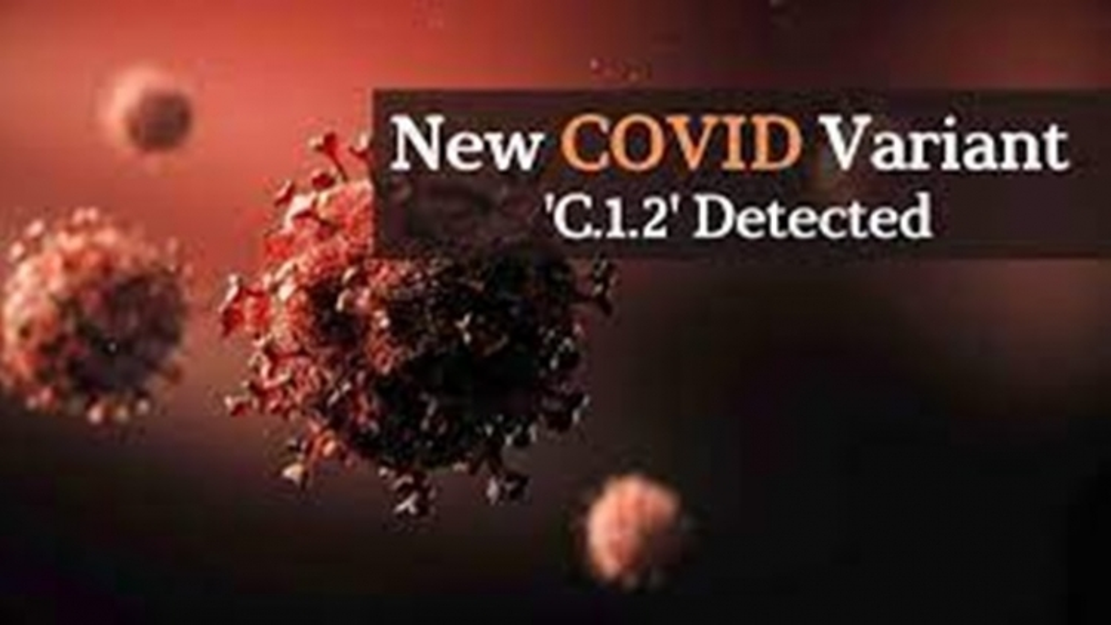 WHO khẳng định biến thể C.1.2 của SARS-CoV-2 không có nguy cơ lây lan mạnh như lo ngại