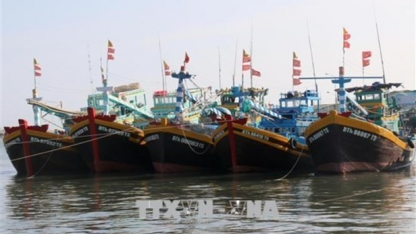 Binh Thuan province makes progress in fighting IUU fishing