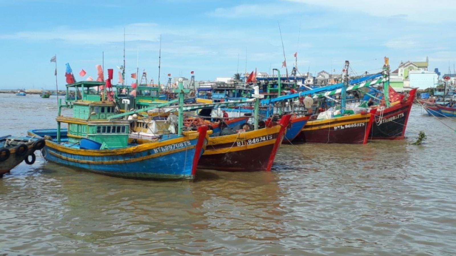 Ngư dân Bình Thuận khí thế ra khơi sau thời gian nằm bờ phòng chống dịch