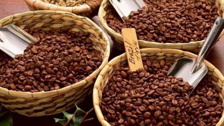 Vietnamese coffee export price hits record high since 2018
