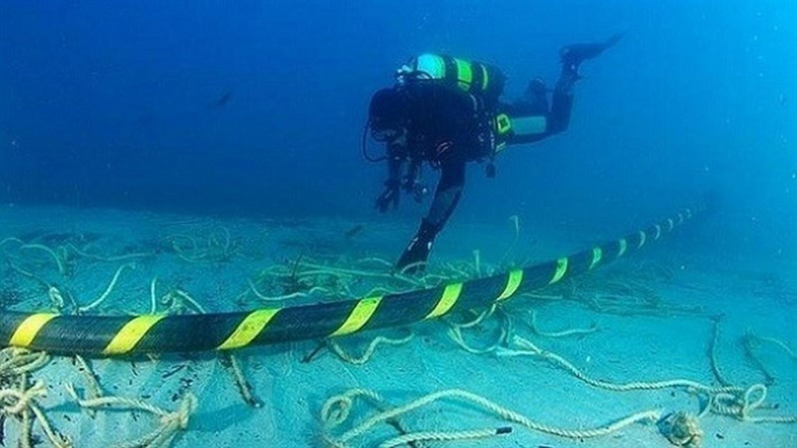 Cáp AAE-1 gặp sự cố, nhà mạng gấp rút bù dung lượng phục vụ kết nối mùa dịch