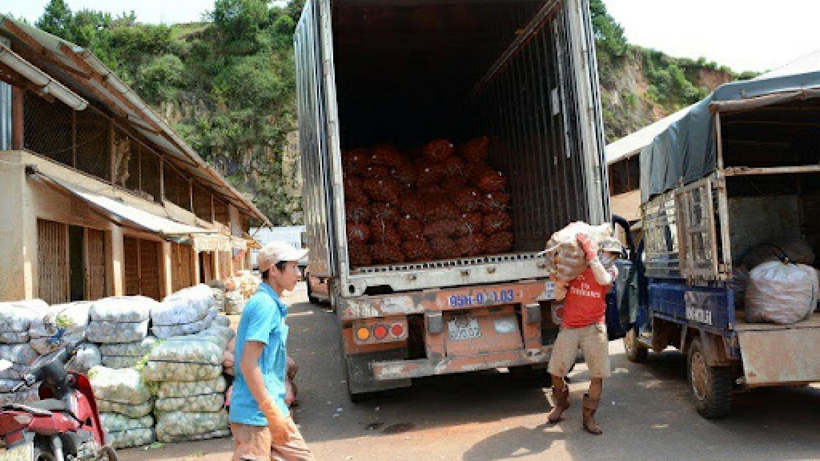 Bộ GTVT hỗ trợ tối đa vận chuyển, tiêu thụ nông sản