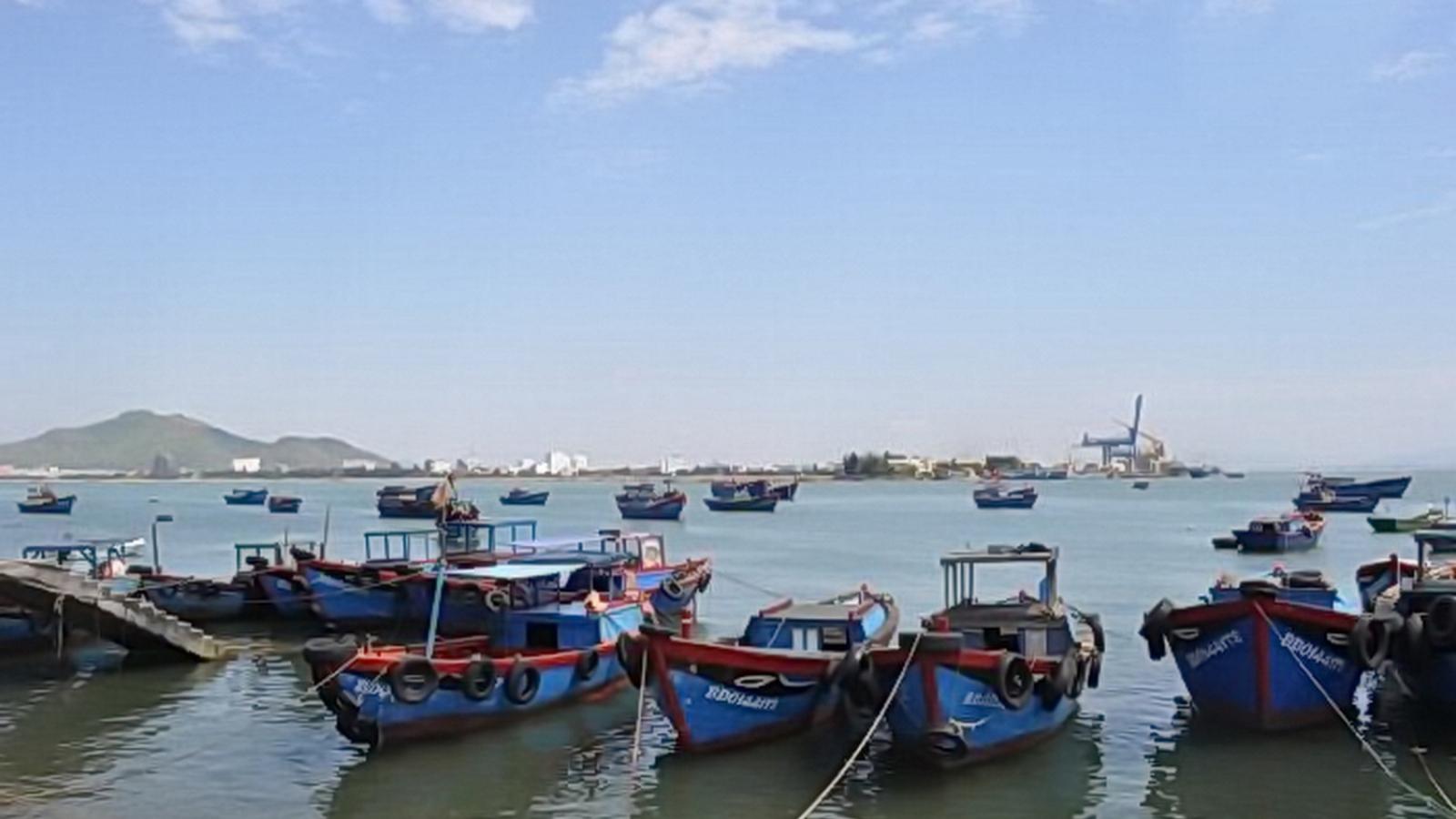 Tạm đình chỉ công tác 15 ngày đối với Bí thư và Chủ tịch UBND phường Hải Cảng (Quy Nhơn)