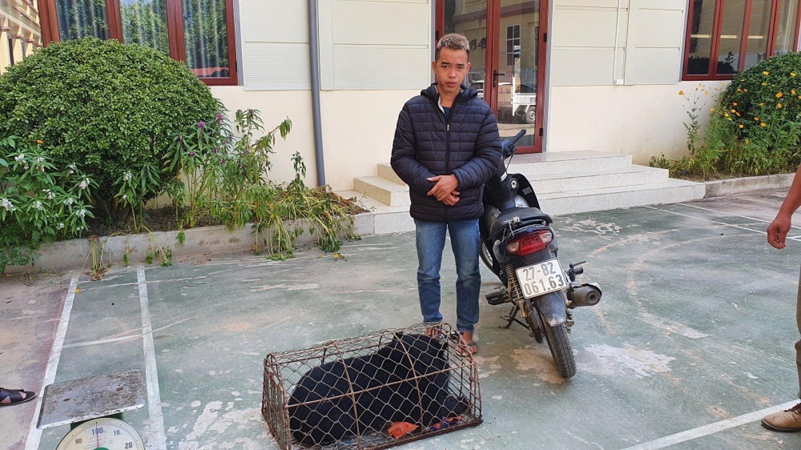 Công an Điện Biên bắt giữ đối tượng vận chuyển động vật hoang dã, quý hiếm