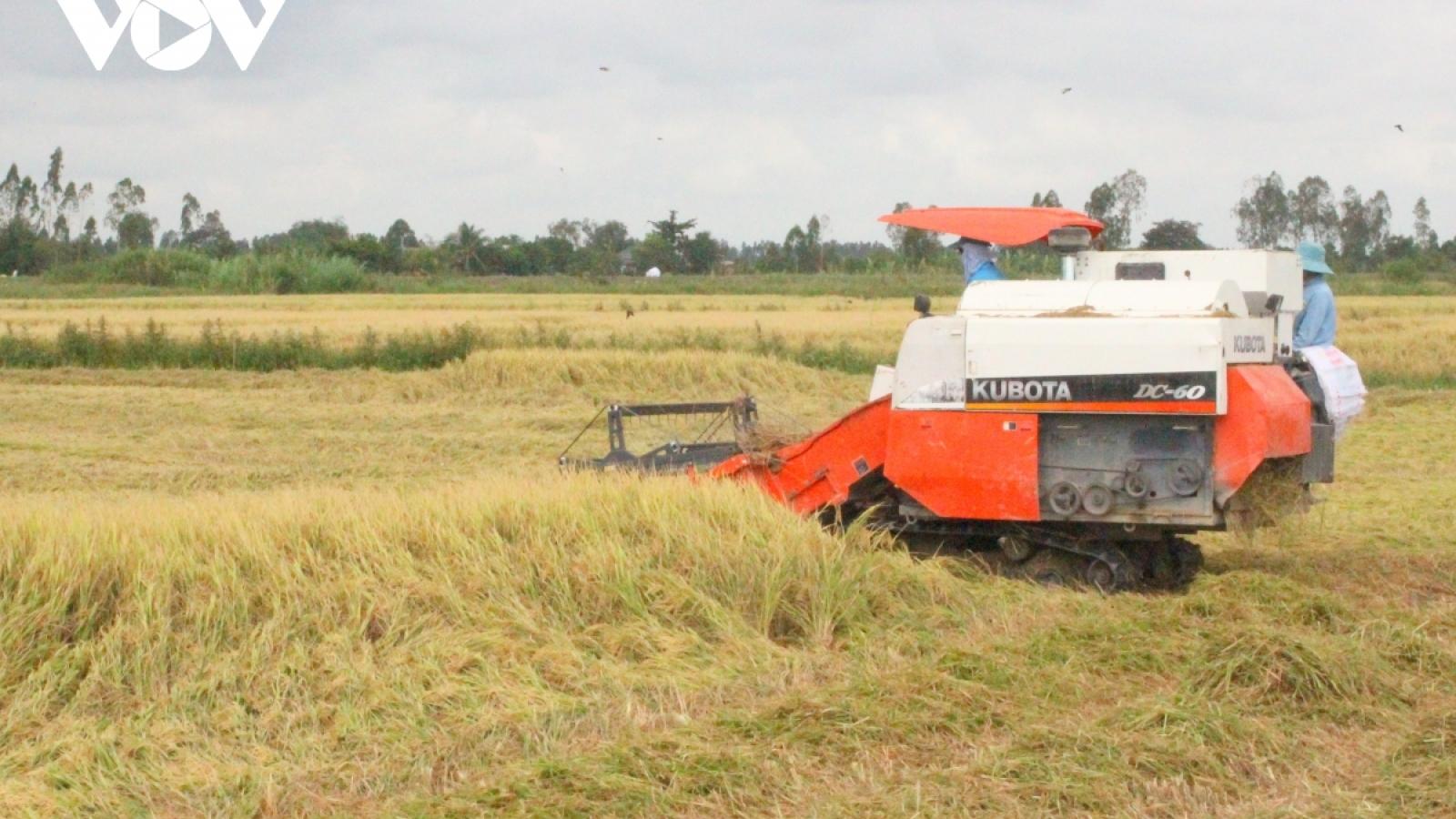 Dịch Covid-19 và bài toán chuỗi liên kết sản xuất tiêu thụ trong nông nghiệp
