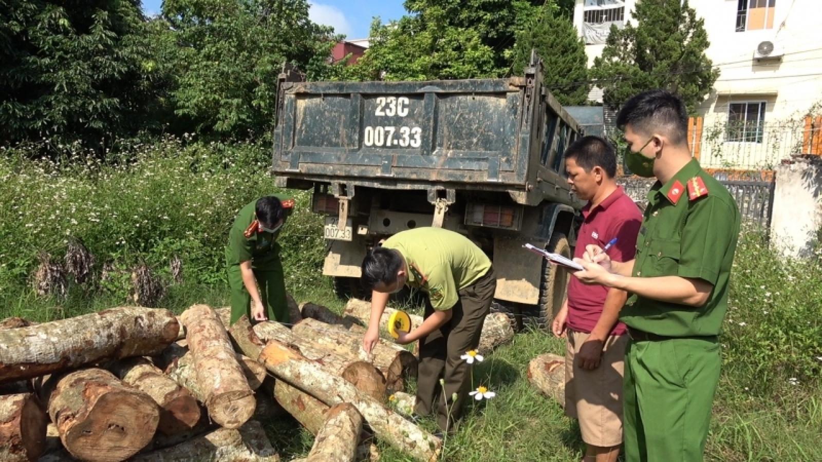 Bắt giữ xe tải chở gỗ tự nhiên không rõ nguồn gốc
