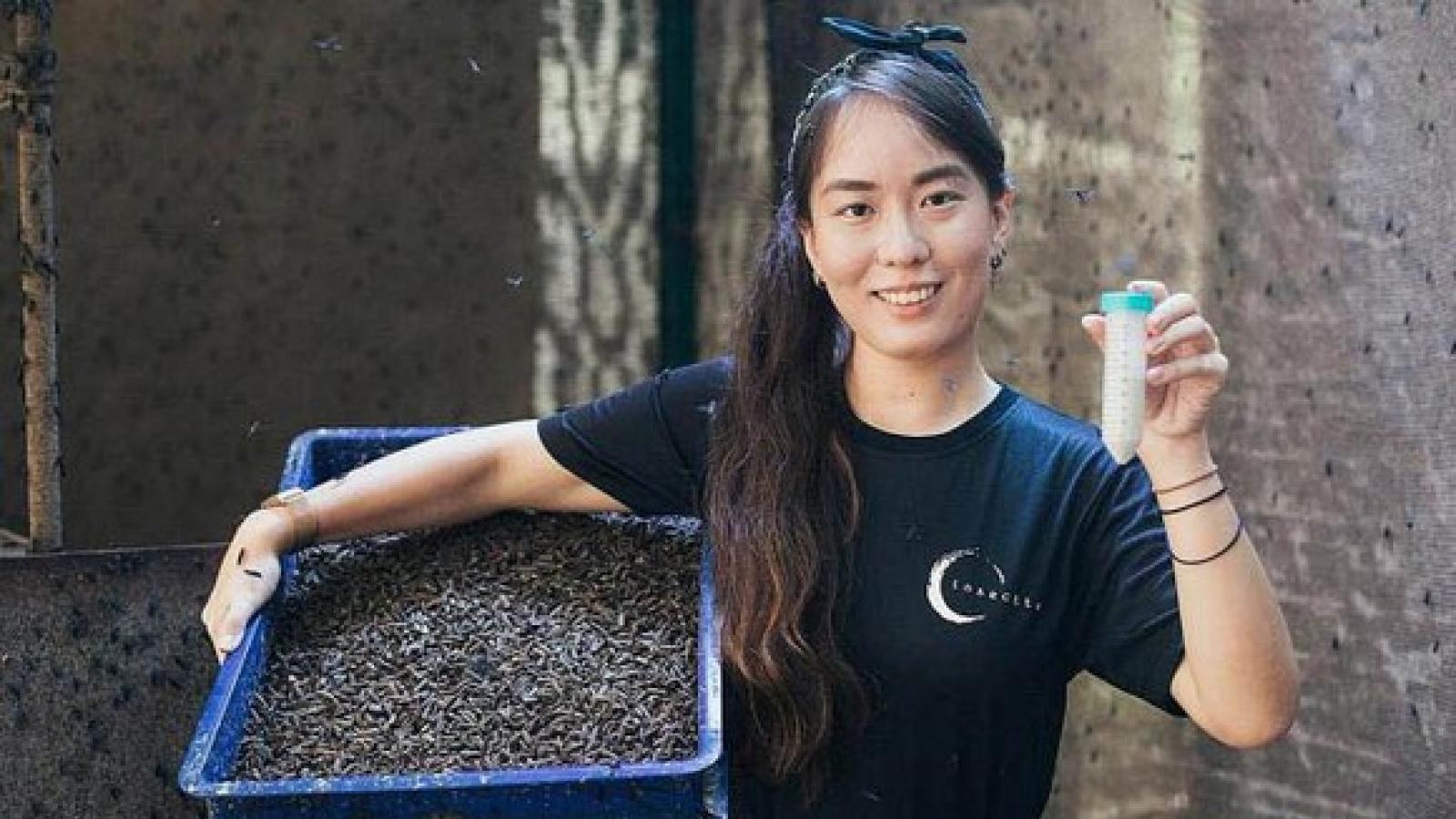 Singapore giới thiệu giải pháp mới chống lãng phí lương thực từ ruồi