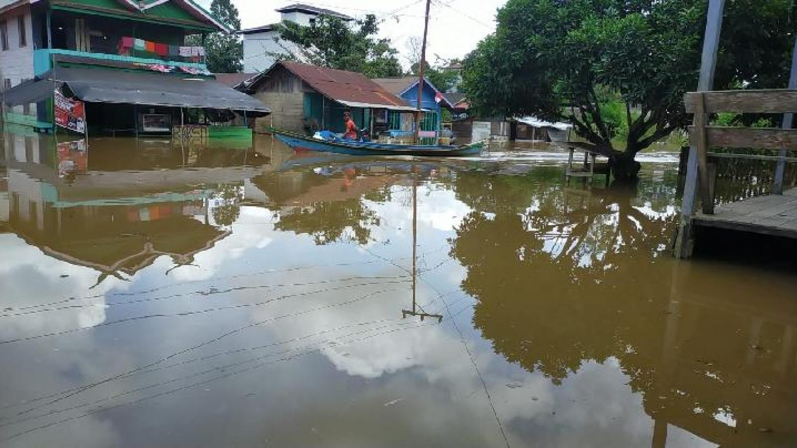 Lũ lụt nghiêm trọng tại Indonesia, một tỉnh trong tình trạng khẩn cấp