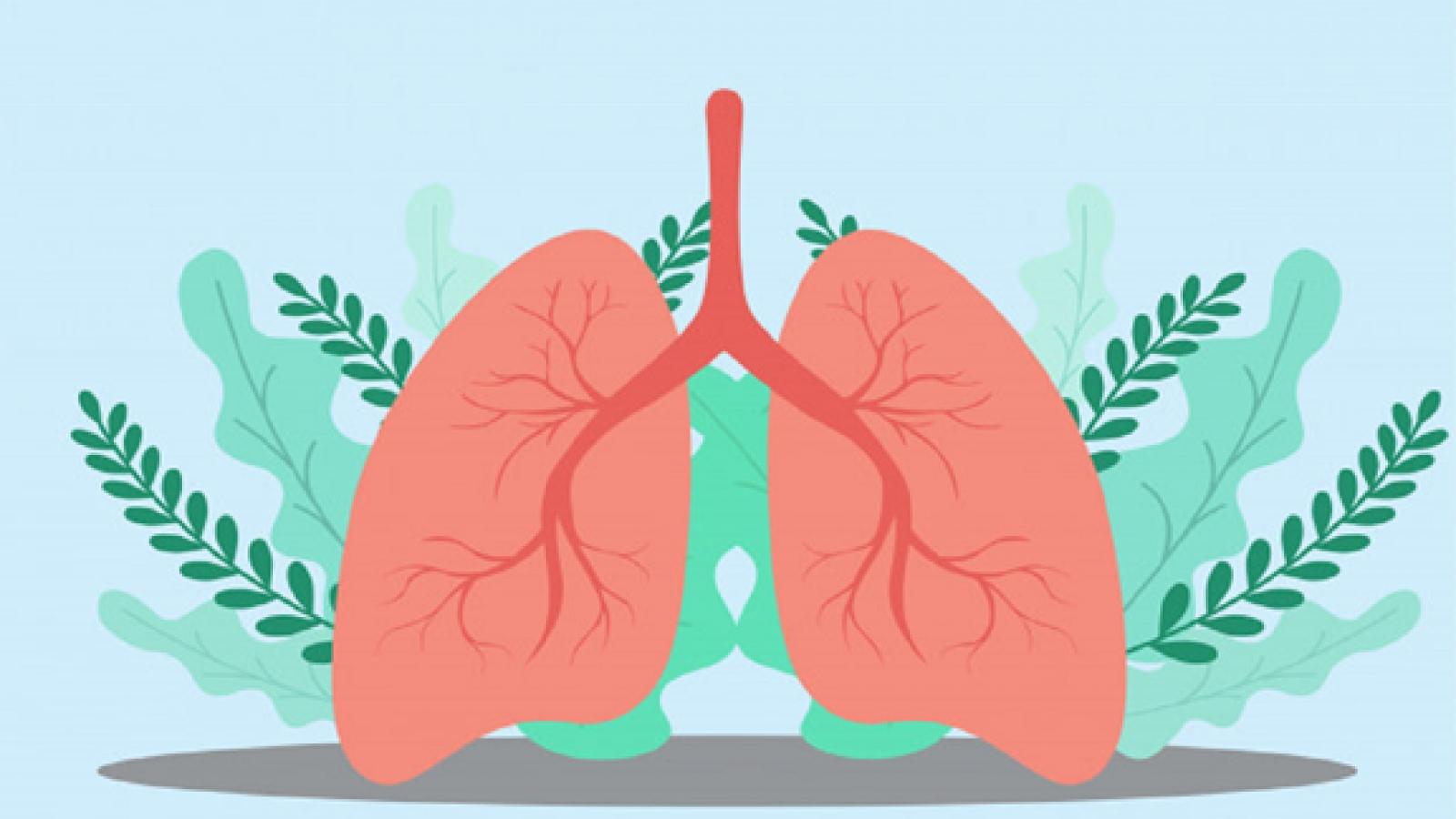 Một số cách bảo vệ phổi của bạn trong thời kỳ đại dịch COVID-19