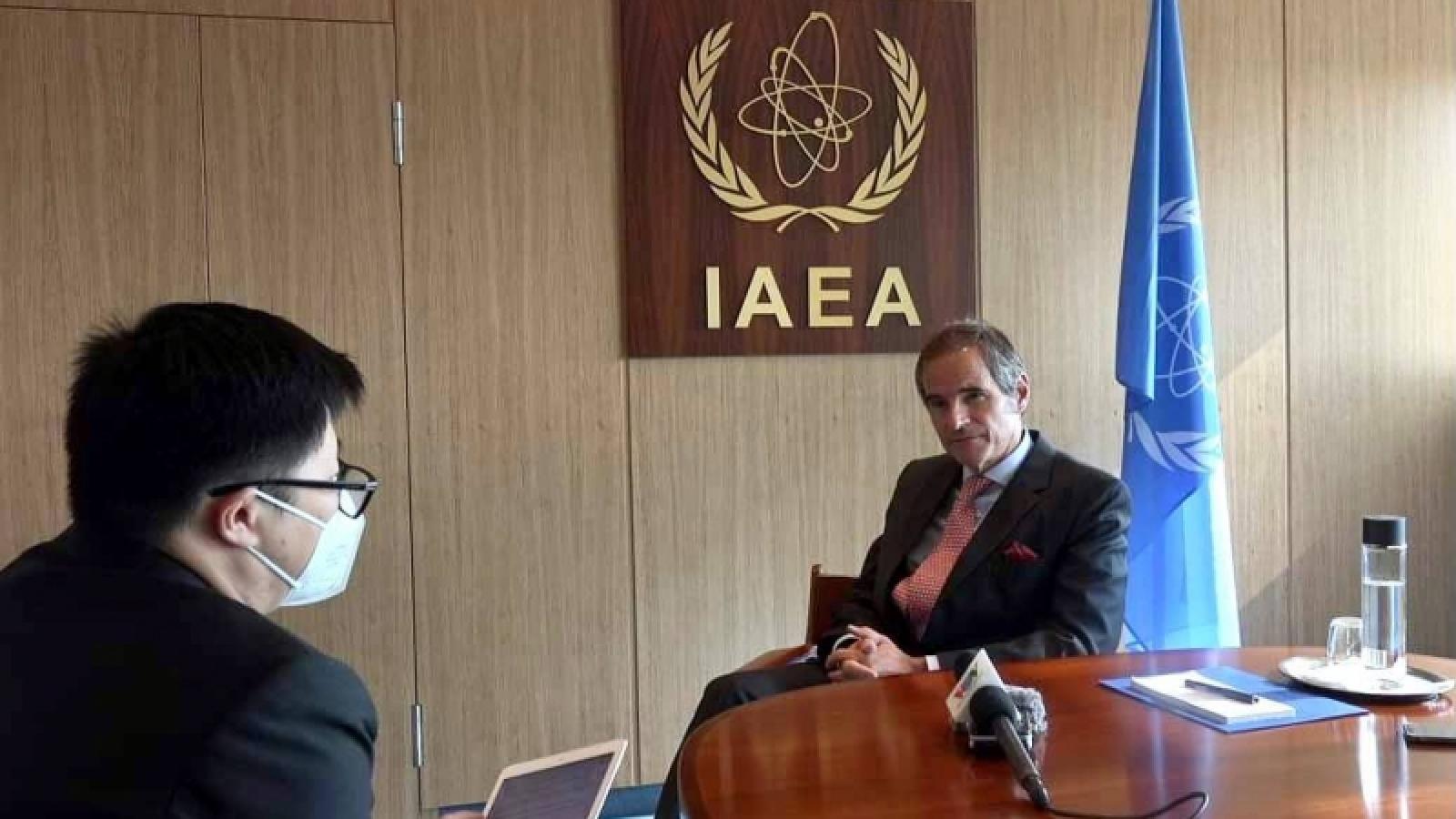 Việt Nam có vai trò quan trọng trong hoạch định chính sách của IAEA