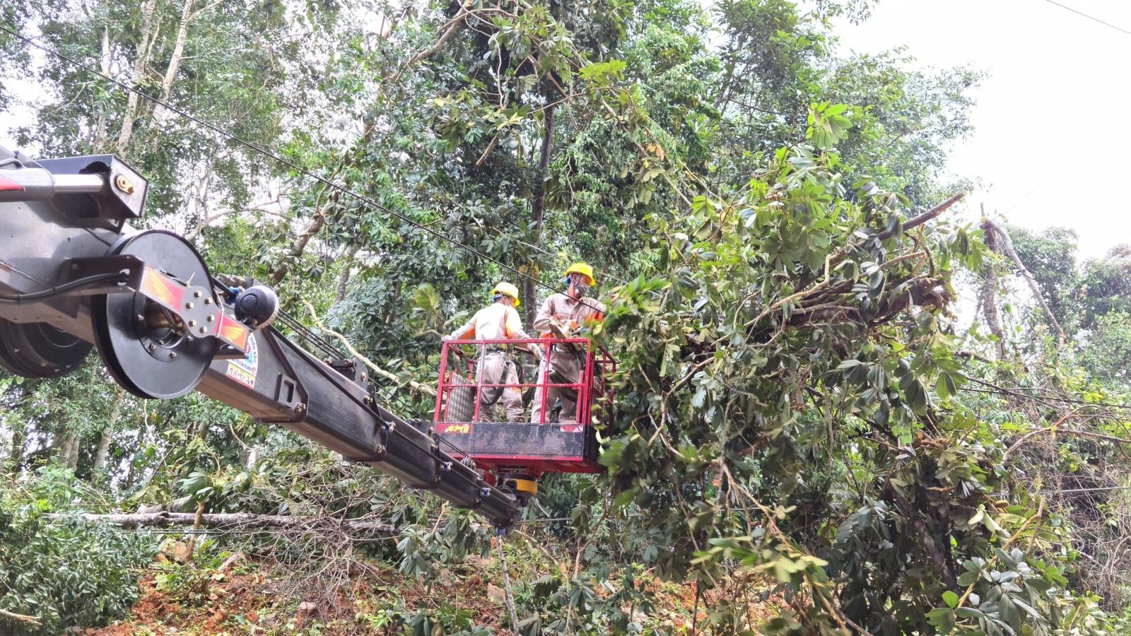 Dông lốc tại Điện Biên gây thiệt hại gần 11 tỷ đồng