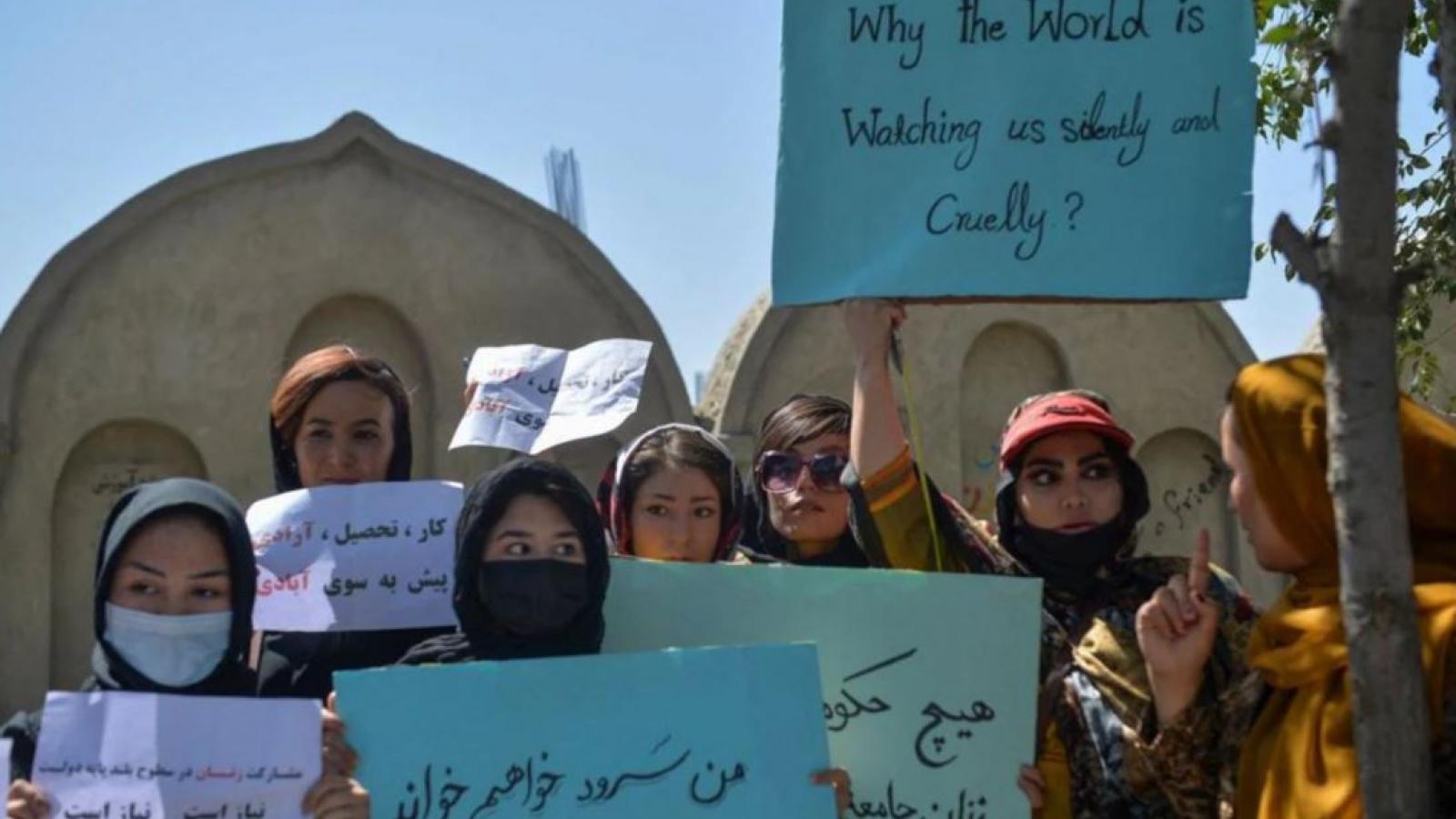 Người phát ngôn Taliban: Phụ nữ chỉ nên sinh con chứ không cần tham gia nội các