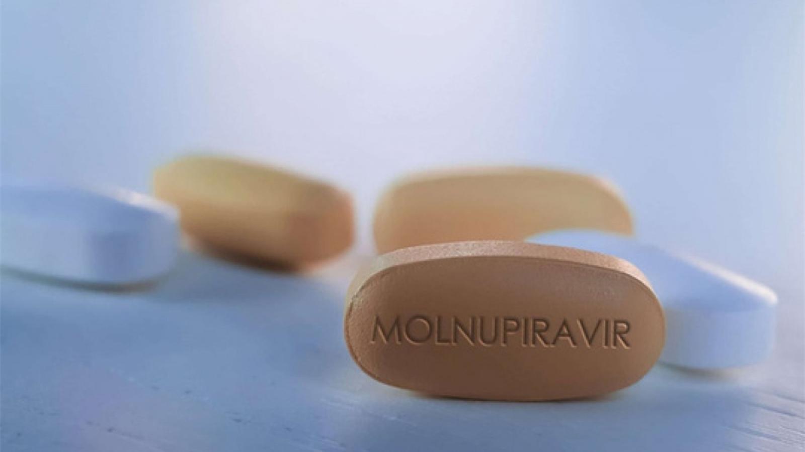 Thuốc chữa Covid-19 dùng hàng ngày: Thêm cơ hội quay lại cuộc sống bình thường