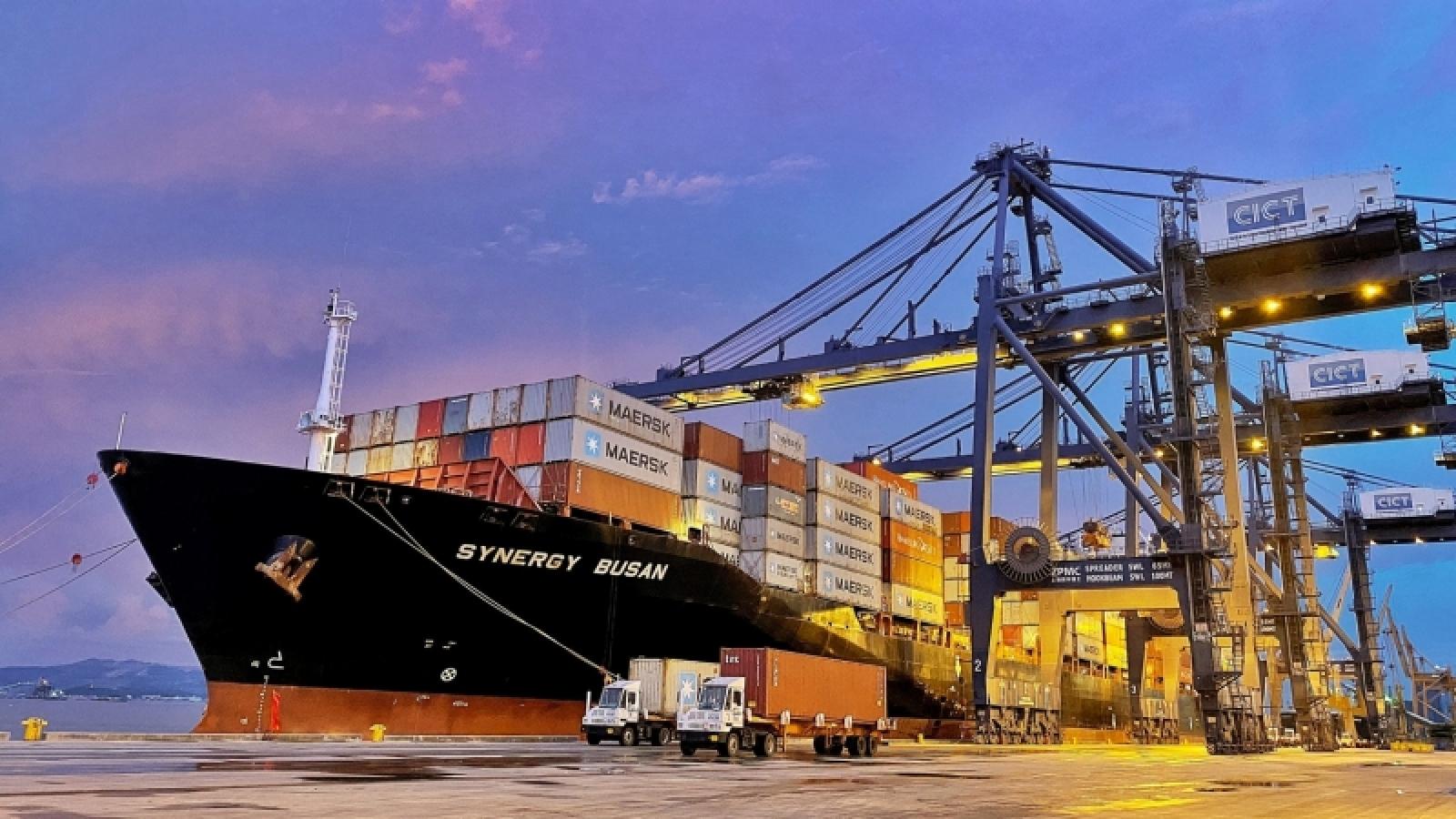 Dẫn tàu hàng nước ngoài vào cảng xuyên vịnh Hạ Long
