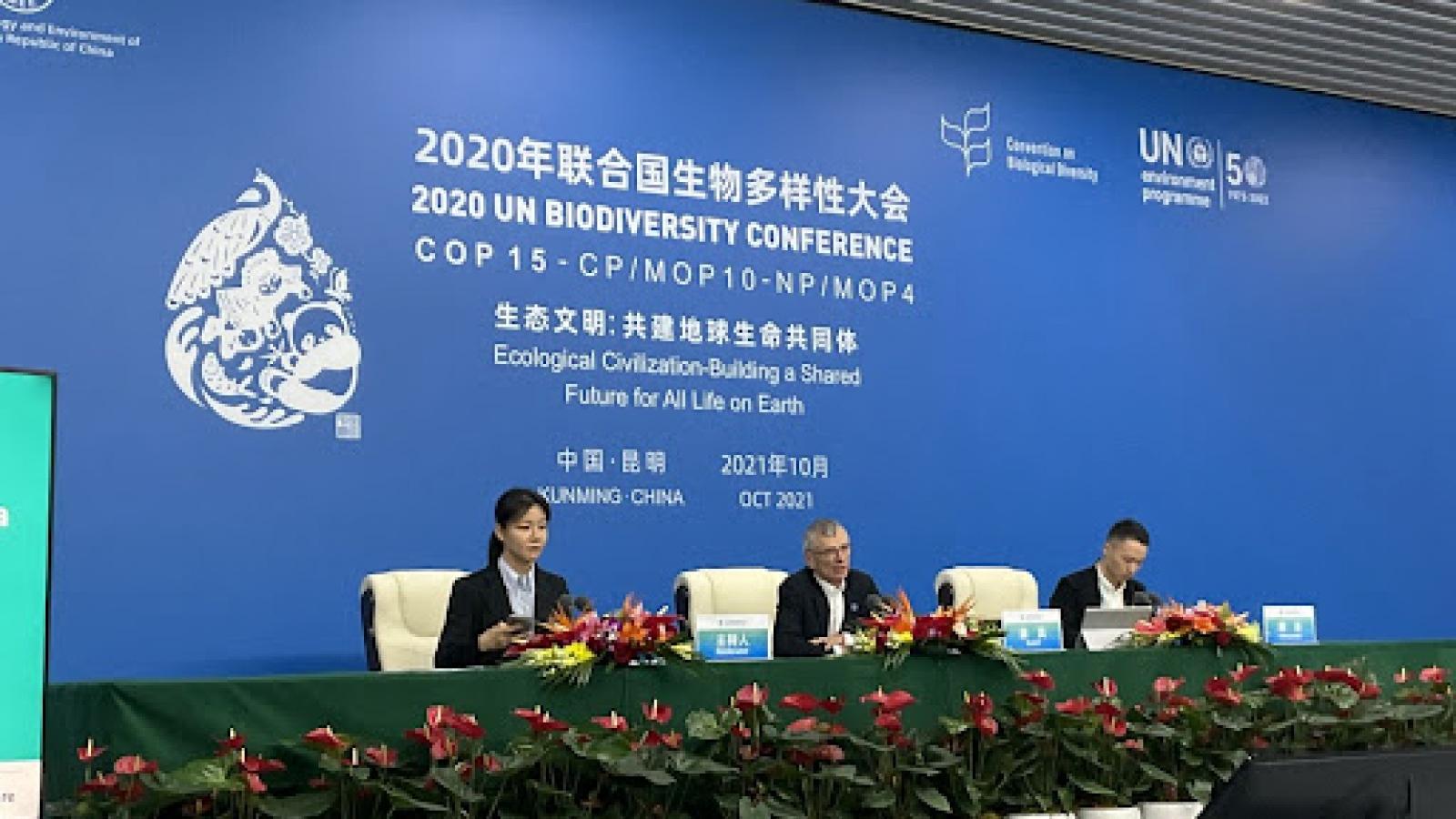 COP 15 thảo luận chiến lược mới về quản trị và khởi động quy trình mới về đa dạng sinh học