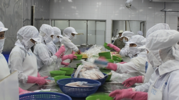 Tuna exports to China skyrocket in first half of September