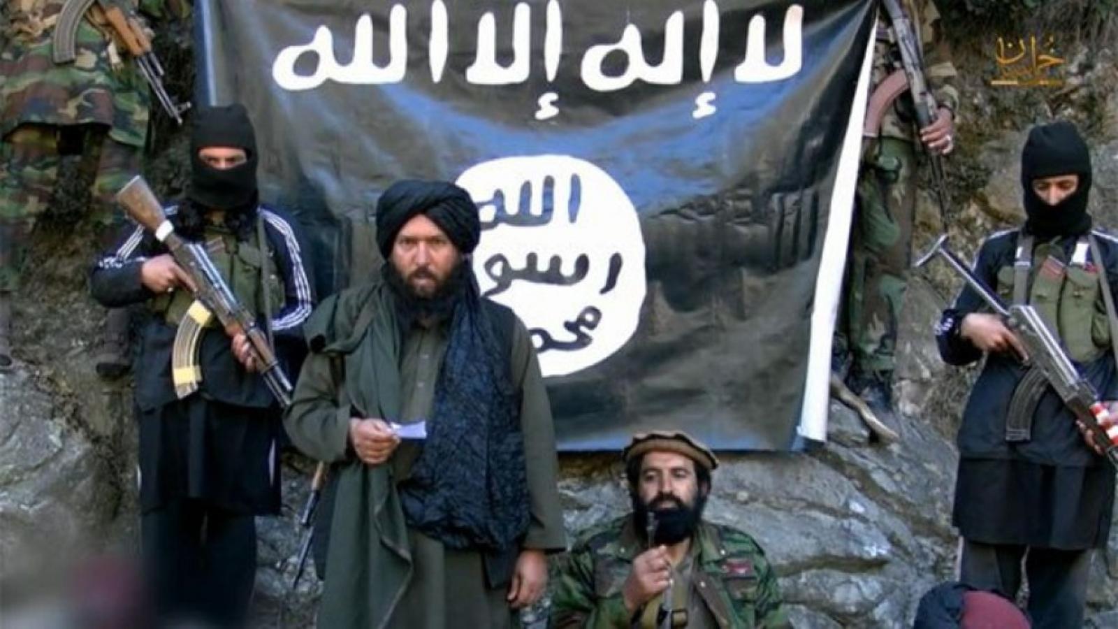 Taliban rất khó tiêu diệt tận gốc mầm khủng bố IS tại Afghanistan