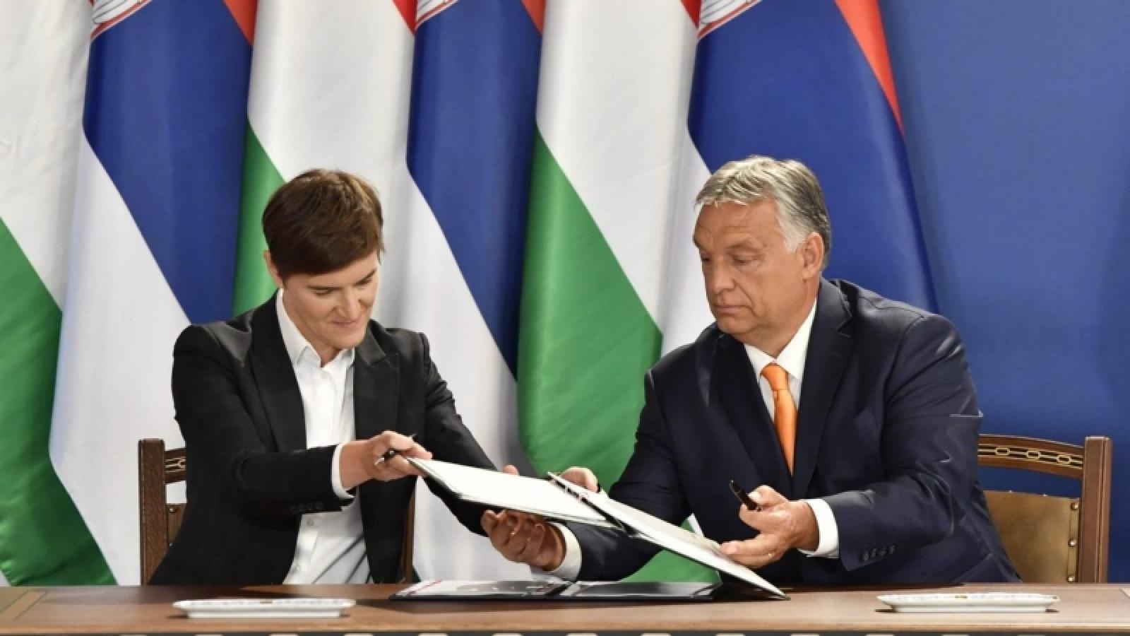 Hungary vàSerbia nhất trí tuần tra chung để chống di cư bất hợp pháp