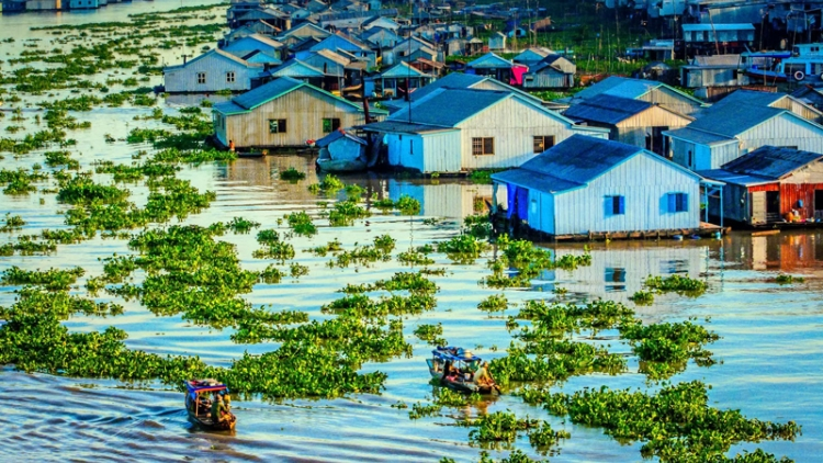 USAID, partners launch project to protect key coastal habitats in Mekong Delta region