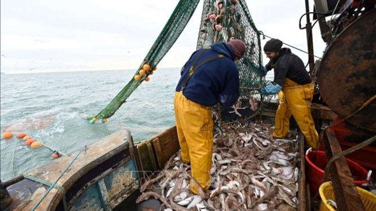 """Pháp ra """"tối hậu thư"""" cho Anh về tranh chấp nghề cá"""