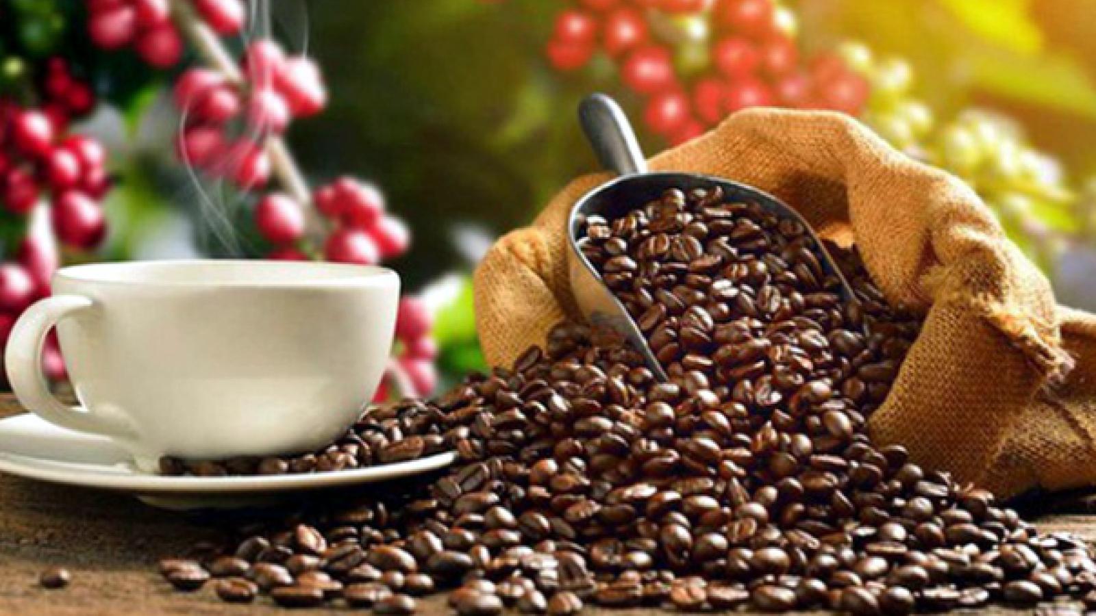 Thị trường Bắc Âu còn nhiều dư địa cho cà phê Việt Nam