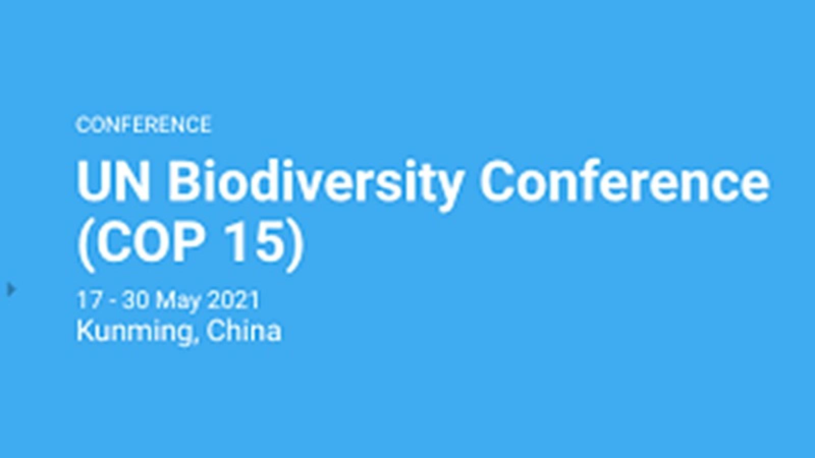 COP 15 khai mạc tại Trung Quốc: Thế giới cần cam kết rõ ràng về đa dạng sinh học