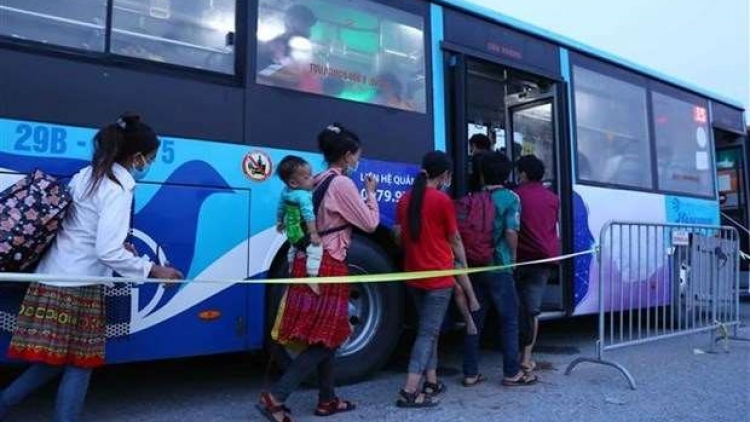 Pilot road passenger transport recovery scheme to start from October 13