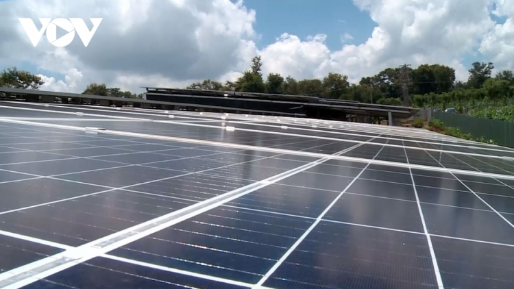 Vietnam, Canada strive to boost clean energy co-operation
