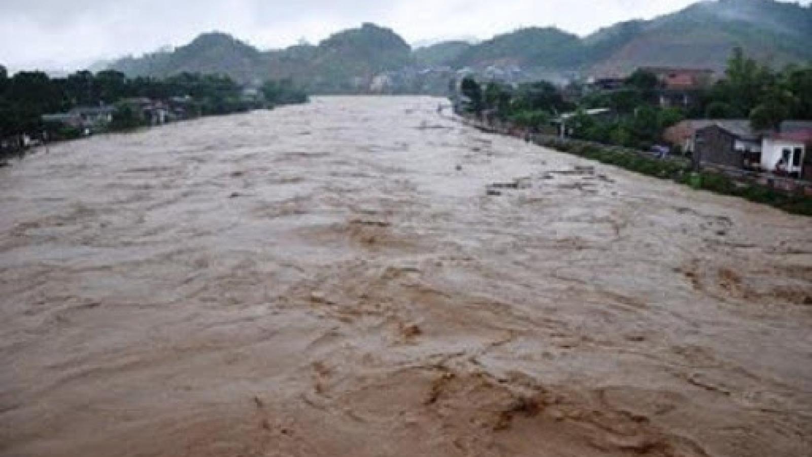 Cảnh báo lũ khẩn cấp trên sông Vu Gia (Quảng Nam), không khí lạnh gây mưa rất to