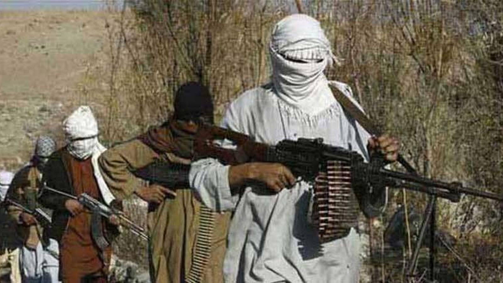 Taliban Afghanistan không muốn làm quân cờ cho Pakistan trong xử lý khủng bố TTP
