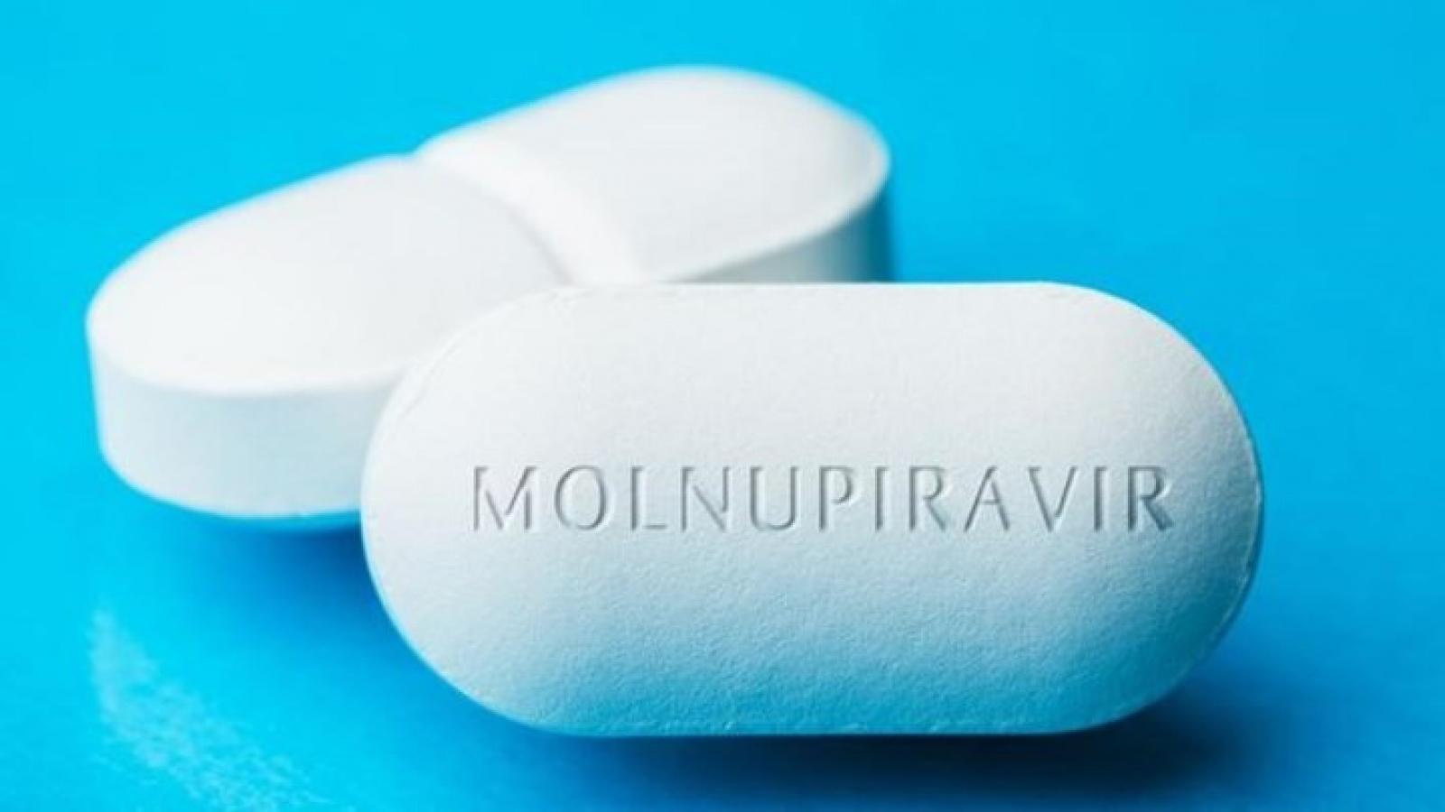 Merck yêu cầu cấp phép sử dụng khẩn cấp cho thuốc uống để điều trị Covid-19 ở Mỹ