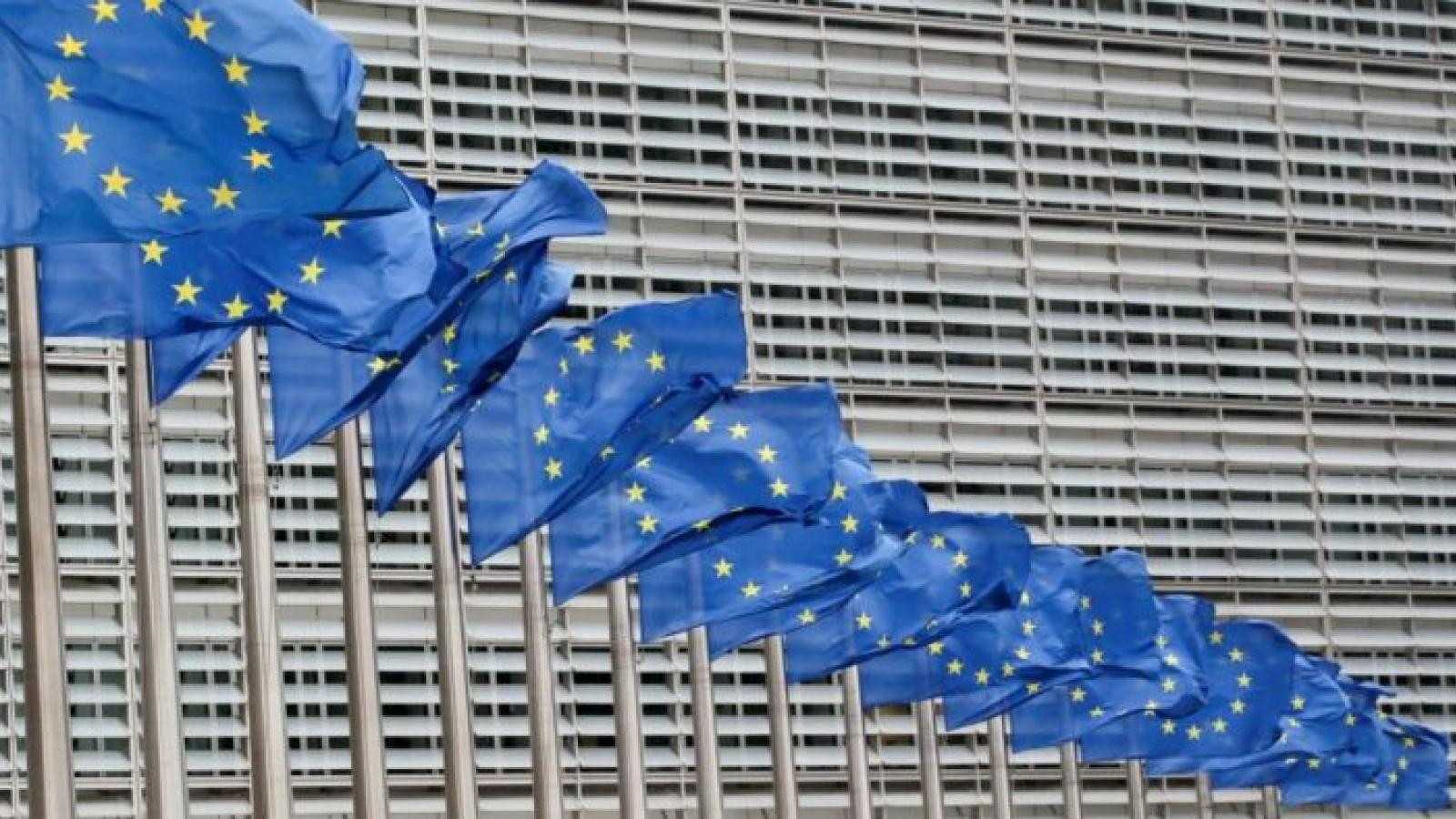 Hội nghị thượng đỉnh EU đề cao năng lượng tái tạo, hạt nhân