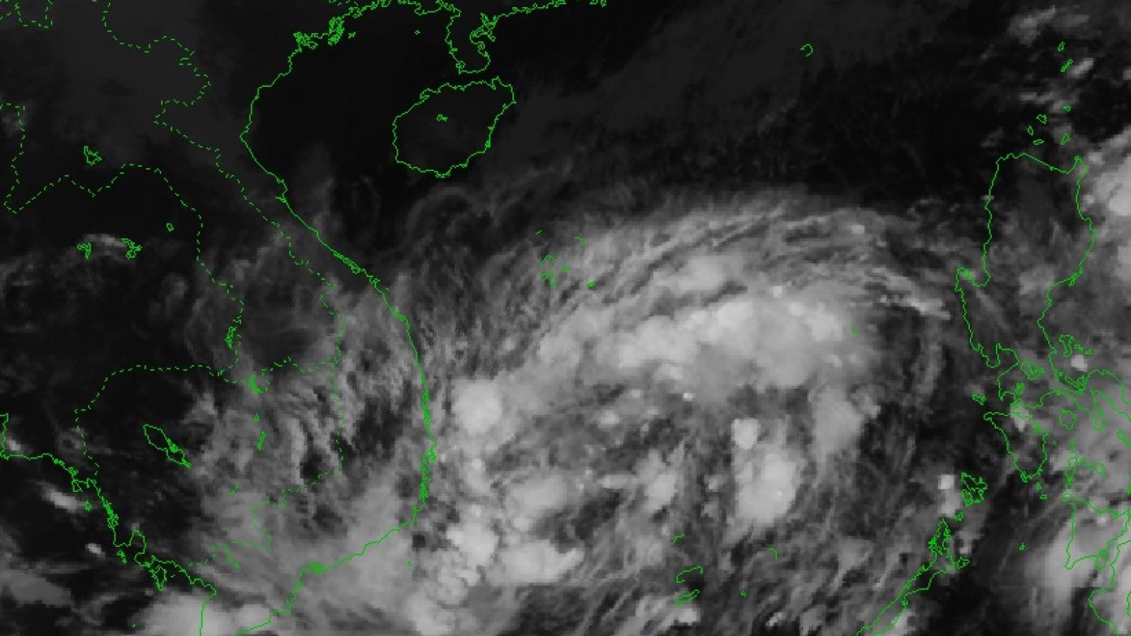 Chủ động ứng phó áp thấp nhiệt đới có khả năng mạnh lên thành bão