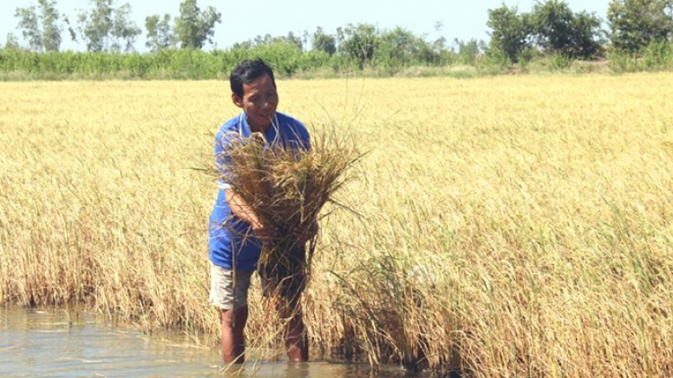 Localities continue to take measures against drought