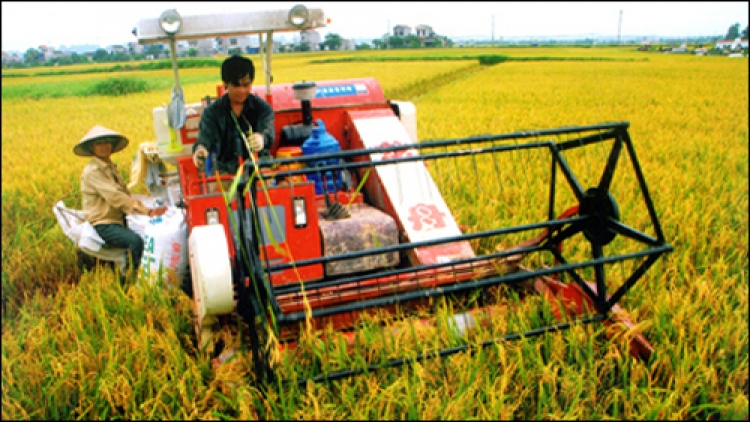 Agriculture seeks to gain growth momentum